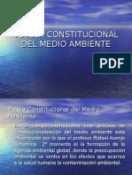 Tutela Constitucional Del Medio Ambiente d
