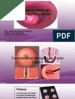 Ginecología - 10 - Lesiones Benignas de Cuello Uterino, Vagina y Vulva