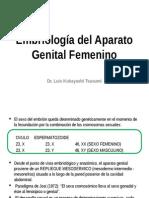 Ginecología - 04 - Embriología Del Aparato Genital Femenino [Modificado]