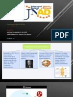 trabajo coloaborativo estructura moolecular 2015 unad