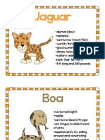 animal posters - lesson 1