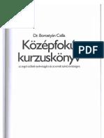 Borostyán Csilla - Középfokú kurzuskönyv az angol szóbeli nyelvvizsgára 7d8f7e7d23