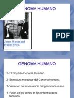 GENOMA HUMANO 1
