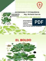 El Boldo Diapositiva Original 1