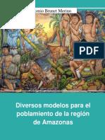 Diversos modelos para el poblamiento de la región de Amazonas
