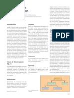 fitoestrogenos posmenopausia