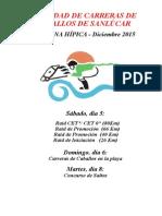 PROGRAMA  RESUMEN S.H. 2015 RAID Y CARRERAS.doc