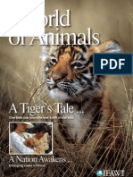 """World of Animals - Issue 3 """"A Tiger's Tale"""""""