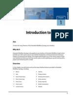 AMI_2012_Ribbon.pdf