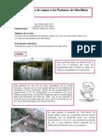 Informe de Pantano