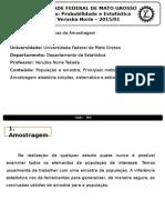 Probabilidade e Estatística - Técnicas de Amostragem