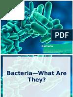 bacteria   viruses notes 2013- updated  scott