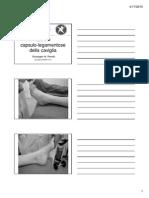 Peretti 14-15 Lez 7bis Caviglia Distorsioni