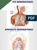 Lezione 6 - Apparato Respiratorio