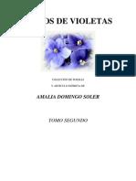 Ramos de Violetas II. Amalia Domingo Soler
