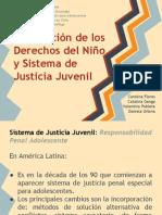 Presentación CDN y Justicia Juvenil