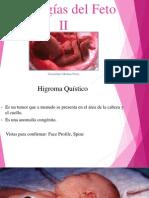 patologias del feto ii