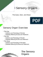 Main Sensory Organs