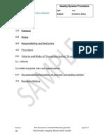 QSP 10.2 Corrective Action (preview)