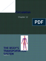 12-1 the Body's Transportation System Web