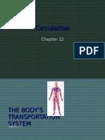 12-1 the Body's Transportation System Web