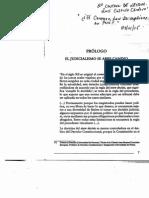 Luis Castillo Cordova - Los Precedentes Vinculantes Del Tribunal Constitucional