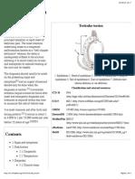 Wikipedia - Testicular Torsion (CHECKED)