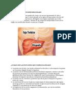 CIRROSIS HEPÁTICA.doc