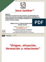 plexolumbar-121220072855-phpapp02