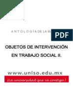 OBJETOS+DE+INTERVENCIÓN+EN+TRABAJO+SOCIAL+II.