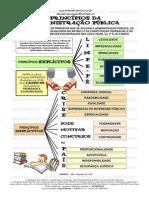entendeu direito ou quer que desenhe - PRINCÍPIOS EXPLÍCITOS E IMPLÍCITOS DA ADMINISTRAÇÃO PÚBLICA.pdf