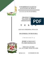 Producción y Transporte de Crudos Pesados (Tesis) - Flores Morales
