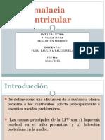 Leucomalacia Periventricular ppt