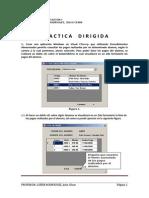 Practica Dirigida Net Bdnotas2010