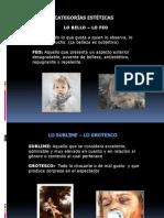CATEGORIAS_ESTETICAS