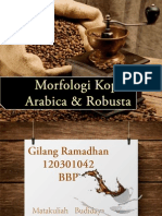 Kopi Arabica Vs Robusta