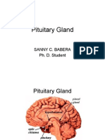 pituitary gland report