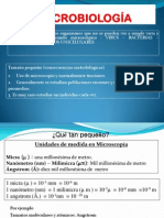 8. Células Procariota (1)