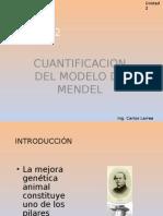 Cuantificación Del Modelo de Mendel