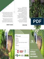 Folder Doencas Pimenta