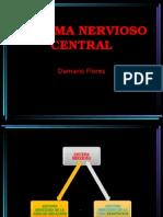 SISTEMA NERVIOSO CENTRAL.ppt