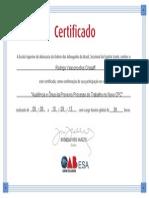 RODRIGO VASCONCELLOS CRISSAFF.pdf