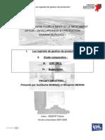 DPP- rapport_final_BM GB.pdf