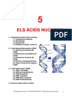 T 5 Acids Nucleics 1112