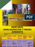 Mercurio, Amalgamacion y Medio Ambientes