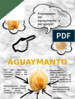 Propiedades Del Aguaymanto