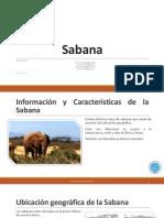 Diapositivas Exposición Sabana. Ecología y Educación Ambiental