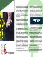 tripiko 25N 2015.pdf