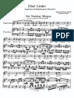 Brahms Werke Band 24 Breitkopf JB 148 Op 49 Scan