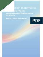 Modelación matemática de flujos reales.docx